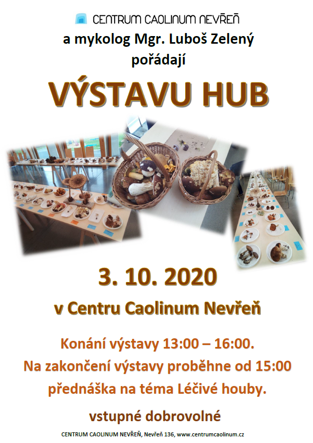 výstava hub 2020